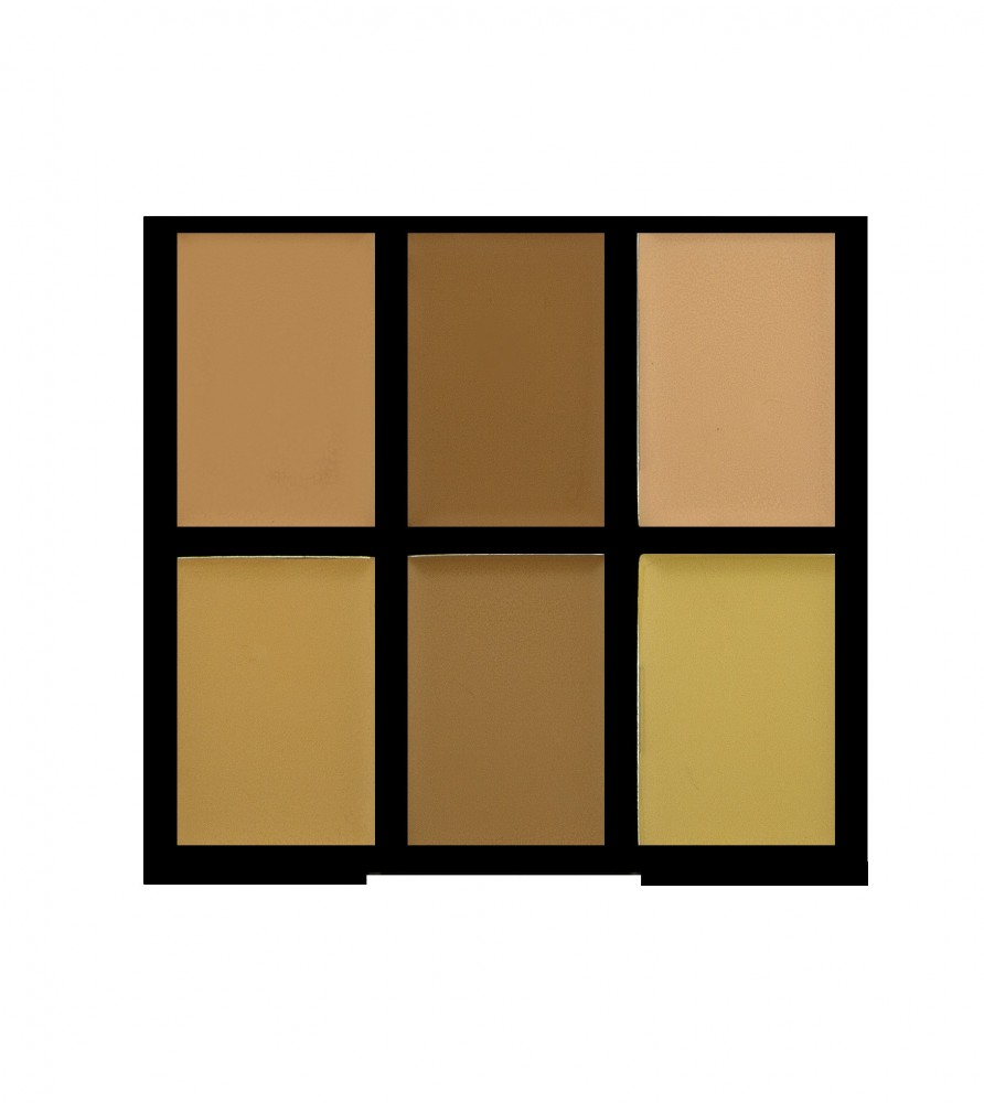 Freedom Makeup paleta korektorjev - Pro Conceal Palette Light/Medium (Pro Conceal and Correct)